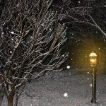 First snow!!!