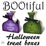 Halloween Treat Bottle Boxes