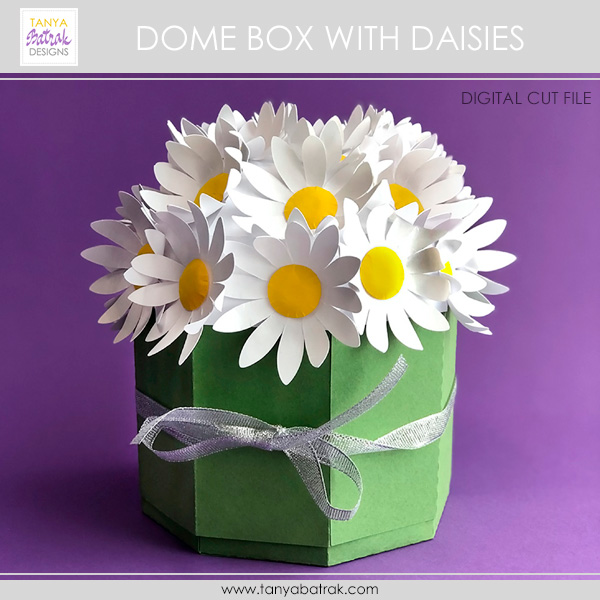 DIY Paper Dome Box with Daisies